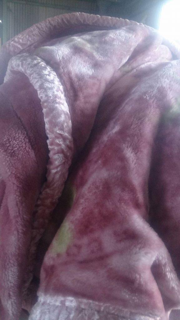 布団、毛布